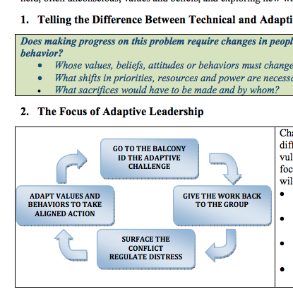 Adaptive Leadership for Results